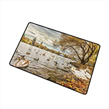 Wang Hai Chuan Landscape Welcome Door mat Prague Charles Bridge and Old Town Czech Republic Riverside Scenic View with Swans Door mat is odorless and Durable W31.5 x L47.2 Inch Gold Grey