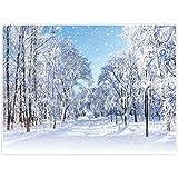 Allenjoy 8x6ft Winter White Snowy Forest Photography Backdrops Frozen Trees Snowflake Wonderland Scene Background Decoration Newborn Baby Children Christmas Portrait Photo Studio Booth Props Supplies