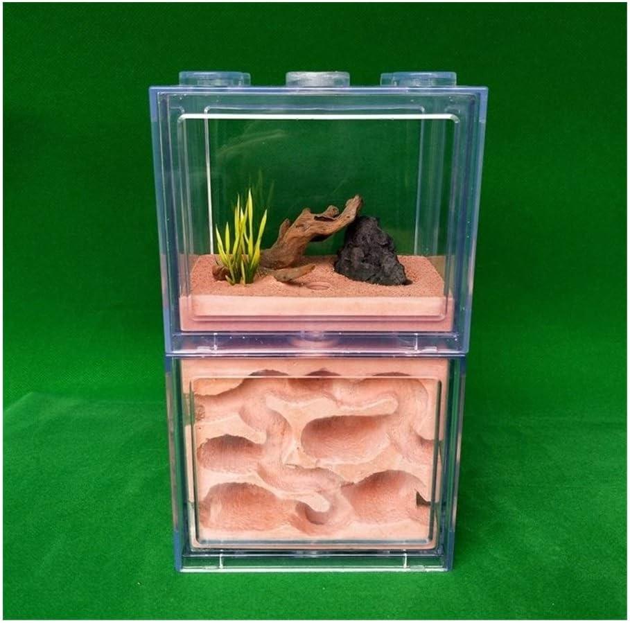 YYDD Ant Habitat Bug Cage Nest Breeding Gypsum Core Free shipping on posting reviews - High quality new K