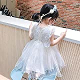 SUNXC Primera Comunion Vestido, Vestido de Princesa con alas traseras para niñas-Un Tipo_90cm,Cumpleaños De Halloween Vestido de Princesa