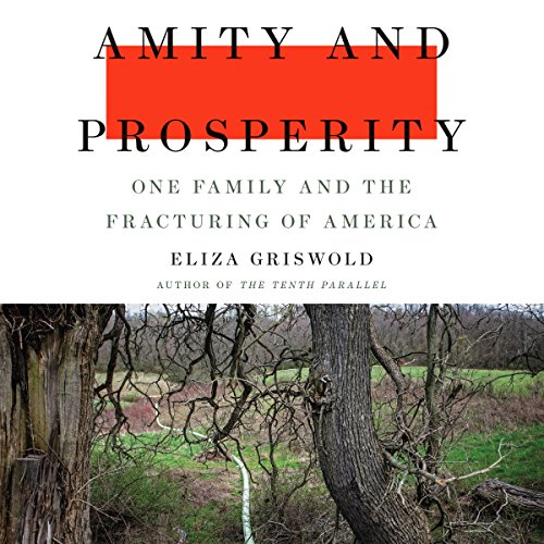 Amity and Prosperity audiobook cover art