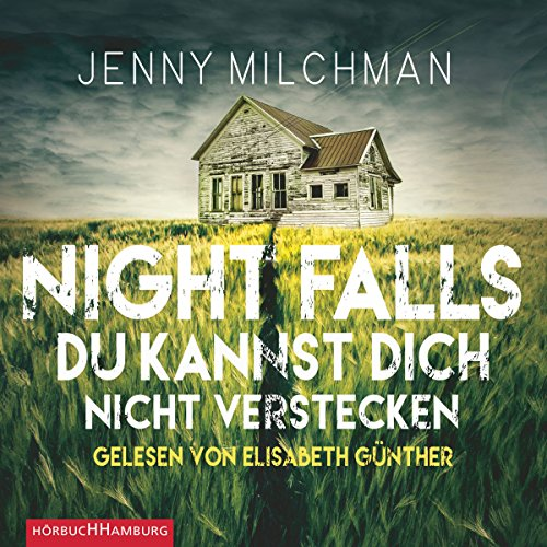 Night Falls audiobook cover art