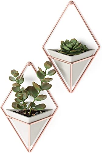 Umbra Trigg Hanging Planter Vase & Geometric Wall Decor Containers-for Succulents, Air, Mini Cactus, Faux Plants and ...