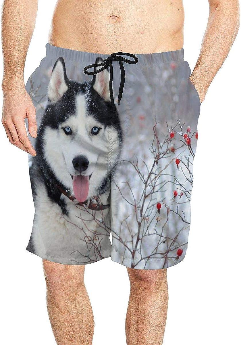 Siberian Husky Dog Men Quick Dry Beach Board Shorts Swim Trunks with Mesh Lining