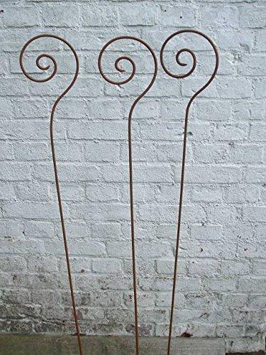 3 Stück, Gartenstab , Rankstab, Rosenstab, Schnecke, Rost,116 cm, Eisen