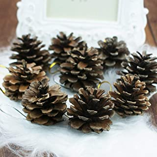 Tyou 松かさ 自然 松ぼっくり 装飾 クリスマス ツリー飾り クリスマス ツリー DIY の装飾 9個入り (約4cm 9個入り)