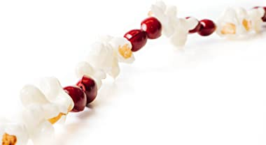 CraftMore Popcorn and Cranberry Plastic Garland