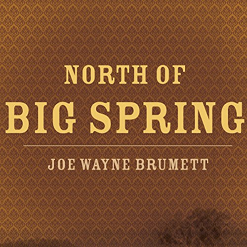 North of Big Spring audiobook cover art