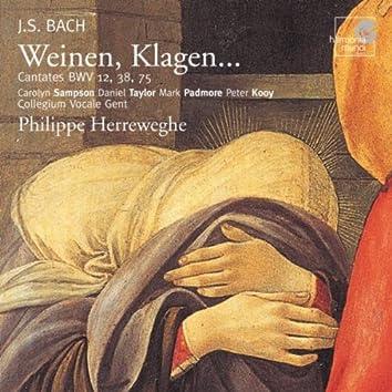 """J.S. Bach: """"Weinen, Klagen"""""""
