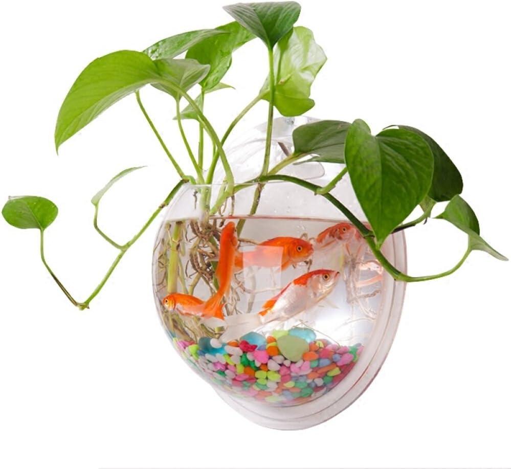 Wall Mounted Fish Tank, Wall Hanging Fish Bowl, Wall Fish Bubble Tank, Wall  Aquarium Clear Acrylic Plant Bowl, Wall Planter Flower Pot, Wall Beta Fish  ...