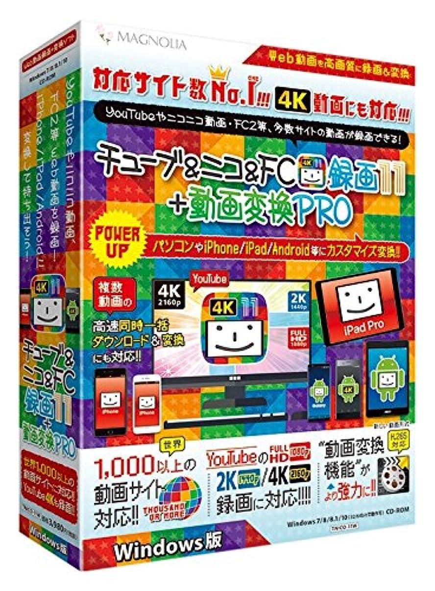 水銀の素人習慣チューブ&ニコ&FC録画11+動画変換PRO Windows版