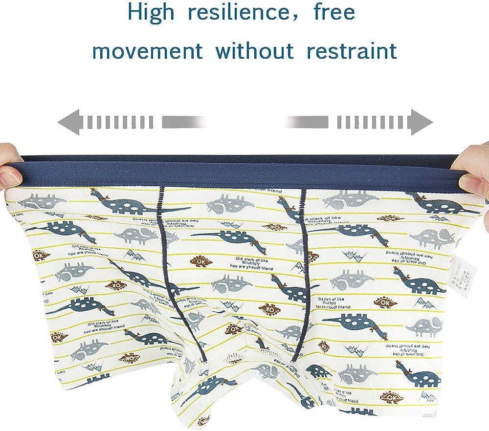 Phennie's Boys' Underwear Briefs Soft 100% Cotton Kids Underwear Toddler Undies Pack of 6