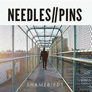 Shamebirds