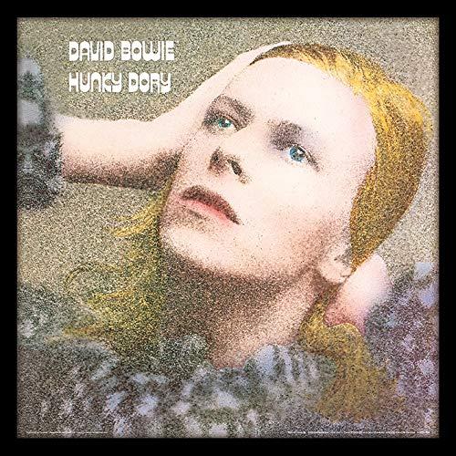 David Bowie Hunky Dory Enmarcado clásico álbum Funda filmcell Factory, Multicolor, 30,5cm