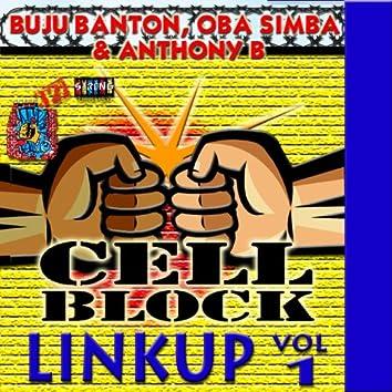 Cell Block Studios Presents: Linkup Vol, 1
