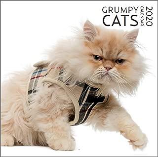 2020 Grumpy Cat Large Wall Calendar | 12