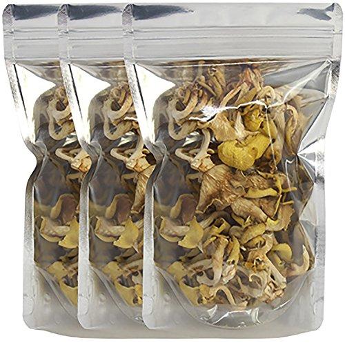 乾燥 たもぎ茸 20g×3袋 たもぎだけ たもぎたけ キノコ きのこ タモギタケ 国産 日本製 エルゴチオネイン 免疫 キシロース ベータグルガン 乾燥 乾物 ベータグルガン スーパーきのこ