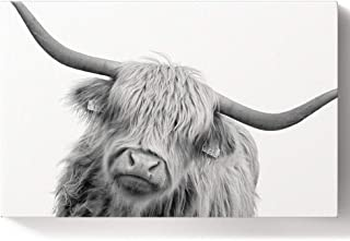 DIY Oil Paintings Paint By Numbers Kit for Adults/Kids Beginner Black And White Animal Art Close-Up Highland Cow Portrait Acrylic Paints on Canvas Wooden Framed Wall Art for Livingroom Bedroom 16X20In