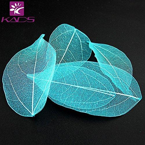 KADS 3X5 pcs/sac Coloré Séché Feuilles 6 Couleur Choix Lumière Jolies Décorations pour Nail Art Manucure Outils (Bleu)