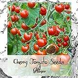ALEXI Tomato Seeds - Cherry Tomato Seeds - Sweetie Cherry Tomato Seeds...