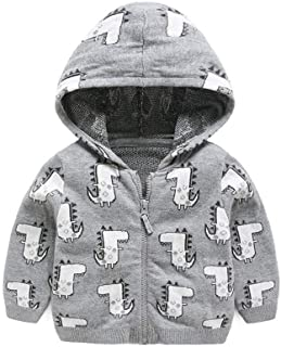 Baby Girl Clothes, Cute Coat 3-24 Months 0-3 Months Baby Girl Clothes, Cotton Jacket Dinosaur Style Hooded Baby Clothes Girl for Wear on The Body Gift Photograph Home Outdoor