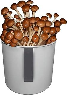 Organic Mushroom Growing Kit, Indoor Mushroom Seeds for Planting Vegetables, Just Add Water Harvest and Eat Fresh Mushroom...