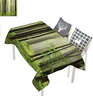 Farm House Decor Collection Fabric Tablecloth Spring Beech Forest Morning Haze in The Mountains of The Southern Polish PictureWhite Green Olive Rectangle Tablecloth W60 xL120 inch