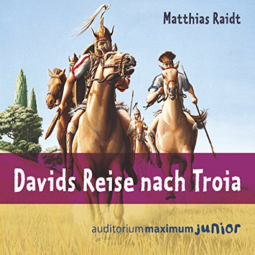Davids Reise nach Troia audiobook cover art