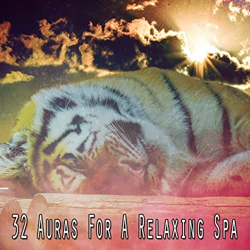 Best Relaxing SPA Music