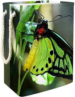 Vockgeng Panier de Rangement pour la Maison Papillon Vert Panier de Rangement imperméable Pliable de Jouets de Jouets de P...