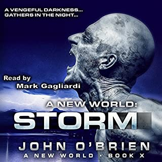 A New World: Storm audiobook cover art
