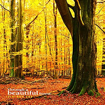 Between beautiful forests