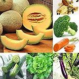 400Pcs / Set Verduras, Frutas, Flores Y Semillas 20 Tipos De Decoración De Plantas De Terraza De Balcón De Jardín Semillas de flores de frutas vegetales