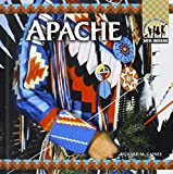 The Apache (Native Americans)