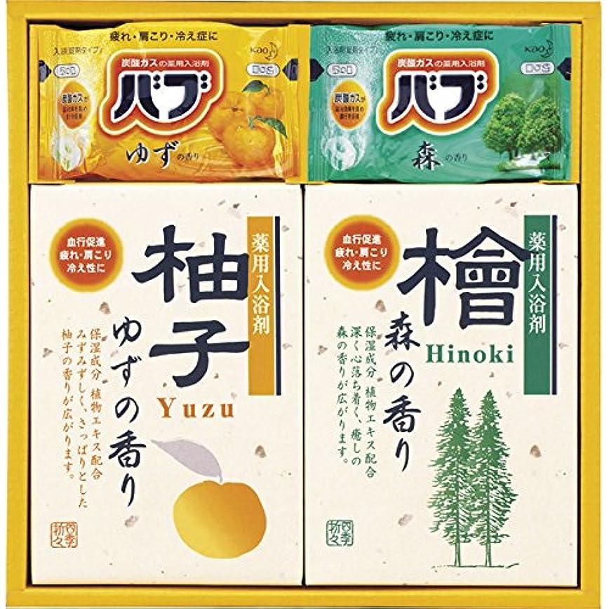 正義乳製品地質学四季折々 薬用入浴剤セット SB-10 7163-014