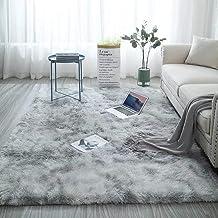 Area Rug Fluffy Shag Rugs Floor Mat Modern Luxury Rectangle Carpet Ultra Soft Comfy for Bedside Bedroom Living Room Kid Ro...
