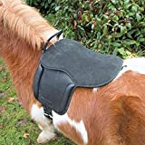 Shires Aviemore Pony Pad Black One Size