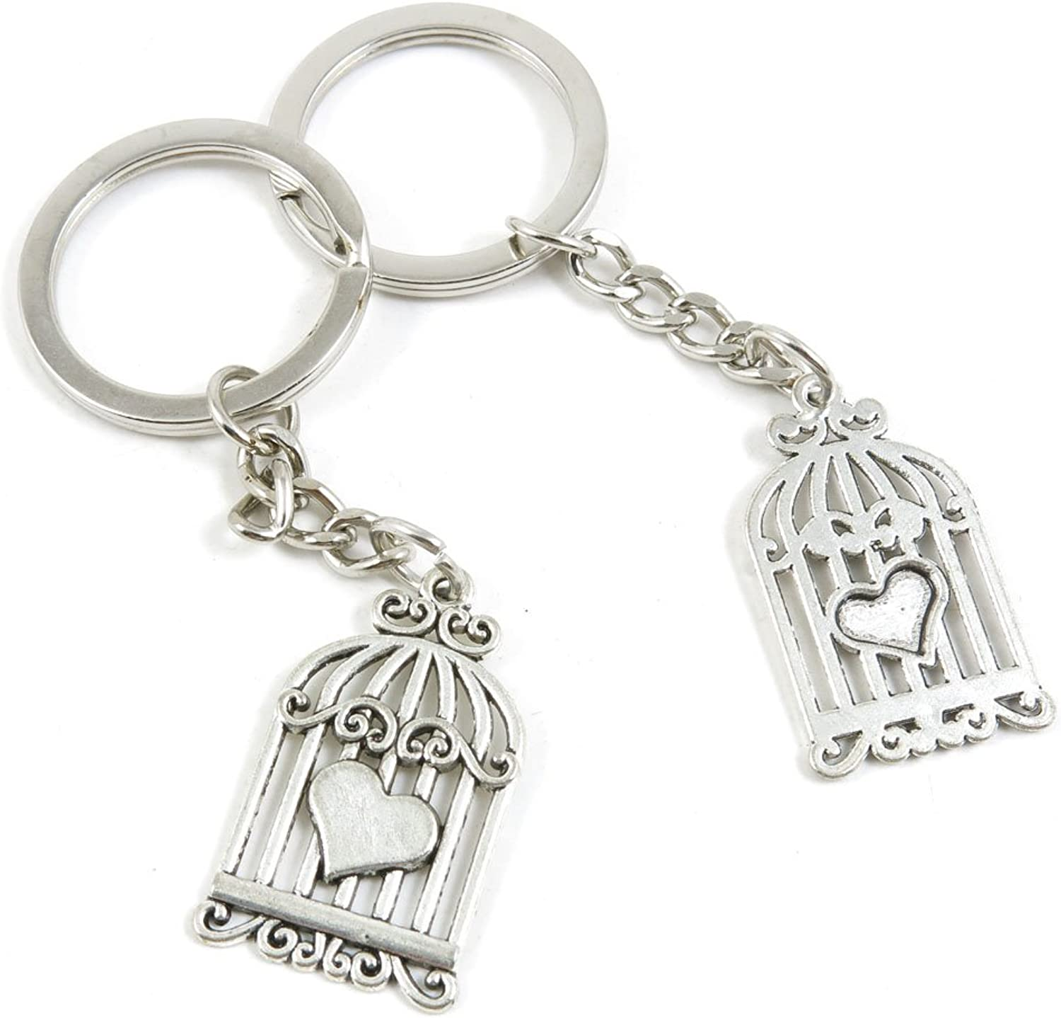 100 Pieces Keychain Keyring Door Car Key Chain Ring Tag Charms Bulk Supply Jewelry Making Clasp Findings B0SR5S Heart Bird Cage Birdcage