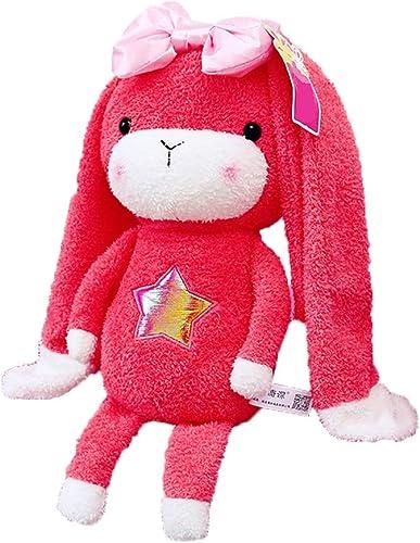 Reconnaissant pour tout Peluche Jouet Miracle Lapin modèles d'explosion de poupées Net Rouge poupée Longues Oreilles Lapin Oreiller de Lapin pour Envoyer des Cadeaux Filles Rouge (Taille   28CM)