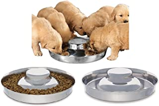 dog bowl for puppy