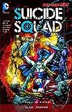 Suicide Squad (2011-2014) Vol. 2: Basilisk Rising (Suicide Squad, New 52 Volume) (English Edition)