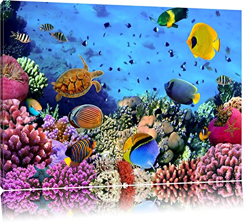 Bunte Fische über Korallenriff Format: 100x70 auf Leinwand, XXL riesige Bilder fertig gerahmt mit Keilrahmen, Kunstdruck auf Wandbild mit Rahmen, günstiger als Gemälde oder Ölbild, kein Poster oder Plakat