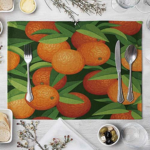 Bishilin Mantel Individual, Antideslizantes Mantel Conjunto 2Pcs Sabana De Algodon Frutas Naranjas Tapetes De Mesa Duraderos Manteles Individuales para Mesa De Comedor Naranja Verde 40X30Cm