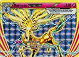 Pokemon - Xerneas Break (82/114) - XY Steam Siege - Holo