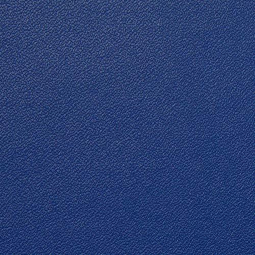 NuPro Schlanke passgenaue Kindle-Hülle, Blau