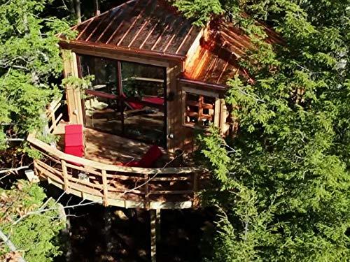 Coolest Treehouse Ever Built