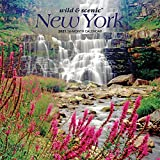 New York Wild & Scenic 2021 7 x 7 Inch Monthly Mini Wall Calendar, USA United States of America Northeast State Nature