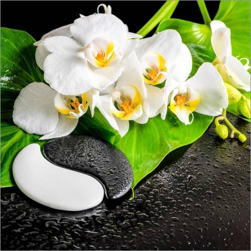 Posterlounge Acrylglasbild 30 x 30 cm: Spa Arrangement mit weißer Orchidee von Editors Choice - Wandbild, Acryl Glasbild, Druck auf Acryl Glas Bild