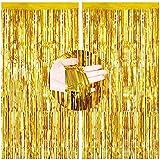2PCS Cortinas de Oropel,Foil Curtains,Metálicas Fringe Cortinas,Fringe Shimmer Cortina,Fiesta de la Boda Fiesta de Cumpleaños,Decoraciones Bricolaje Ventana/Puerta Apoyos Foto/Fotomatón(Oro,1x2.5m)