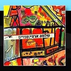 Shfuim (Sane) by Shlomo Artzi